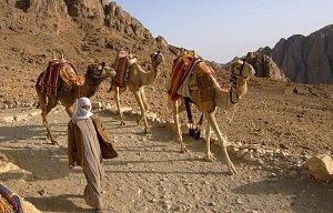 Egypt - poznávačka 2004