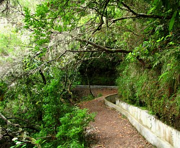Madeira 2010 - levada do Furado a údolí Rabacal