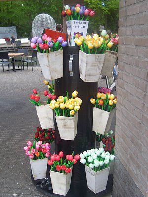 Nizozemi
